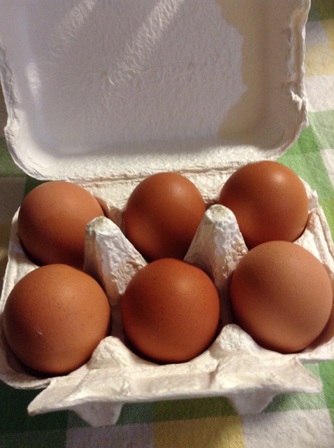 土岐鶏卵のたまご