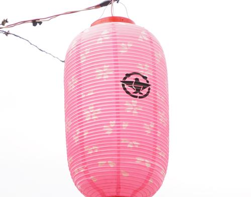元茨木川緑地の提灯のウラ