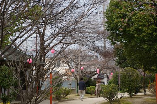 元茨木川緑地の提灯の風景