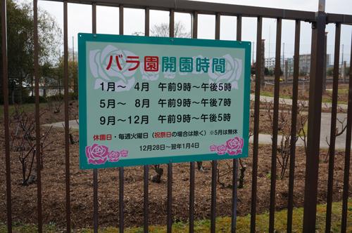 茨木の若園公園のバラ園開園時間