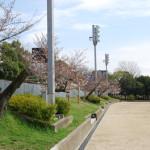 茨木中央公園