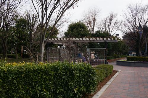 茨木若園公園で休憩してる