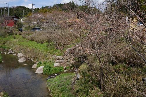 見山の川沿い