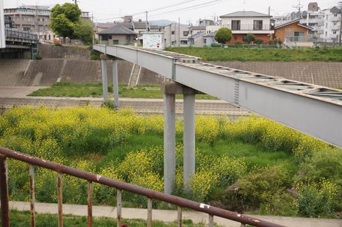 千歳橋付近
