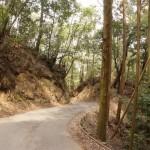 茨木市千堤口の山道