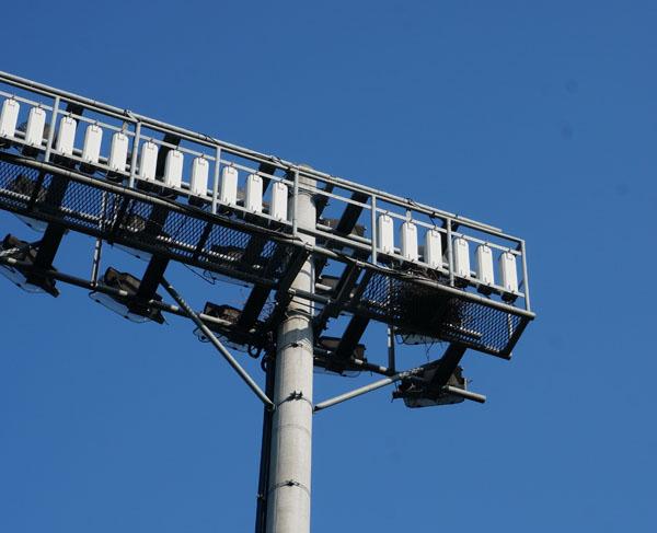万博新競技場そばに鳥の巣