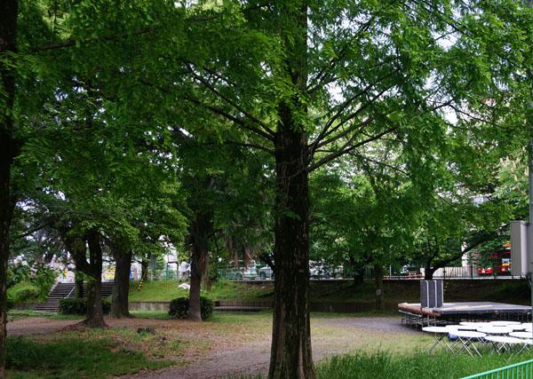 いばおん・森の公園ステージ準備