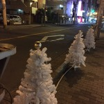 いばらき光の回廊で道路にツリーが並ぶ