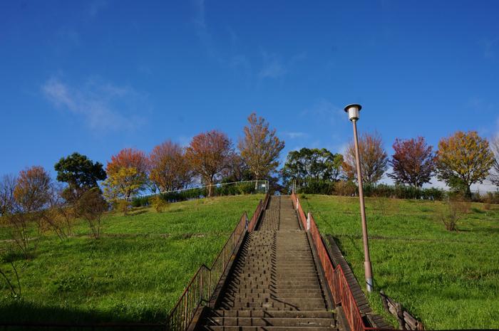 山手台公園を階段下から