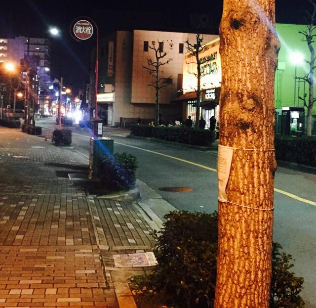 枚方茨木線夜の東方面