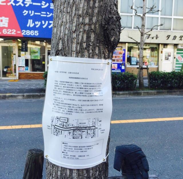 春日丘高校前の植樹植え替えのお知らせ
