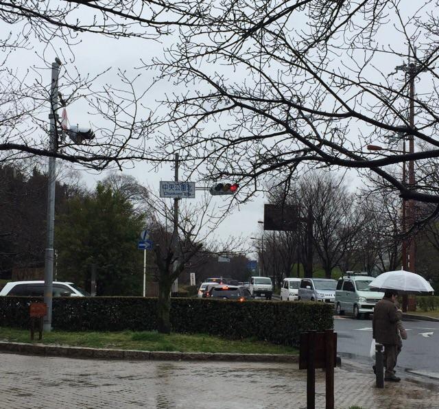 川端通りの南方向