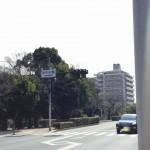 20162あやめ橋交差点