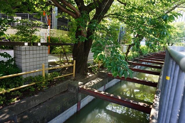 総持寺駅前の水路