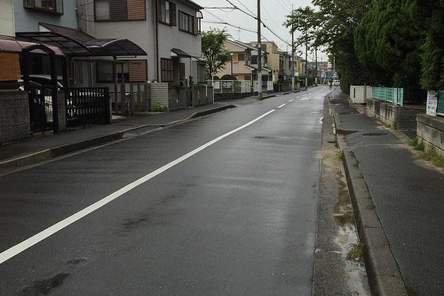 池輝への道公園横2