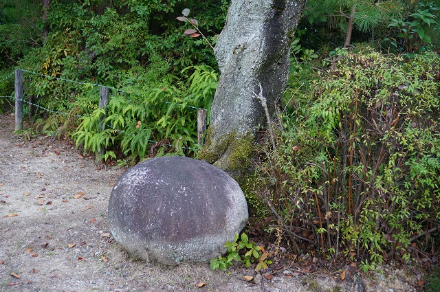 弁天さんにあった丸い石2