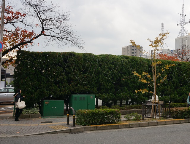 1120光の回廊市役所駐車場DSC02234.jpg