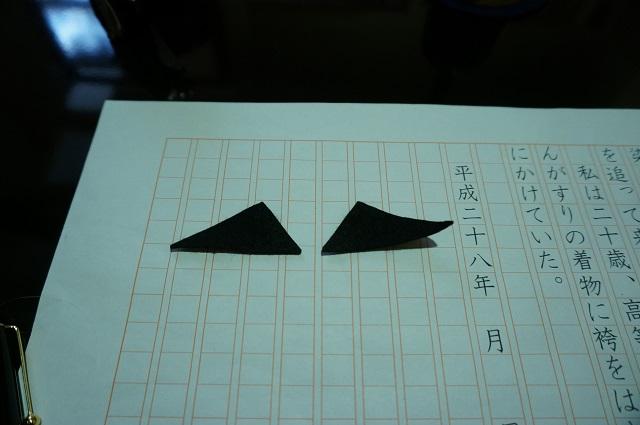 なりきり康成の眉毛DSC02689