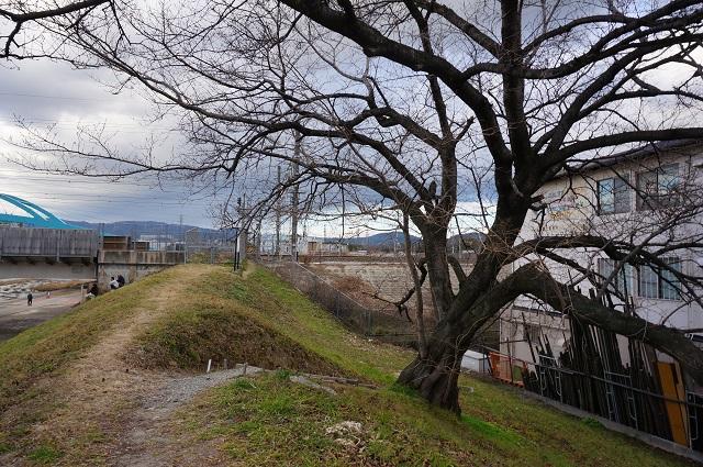 安威川土手のJR線路DSC03462