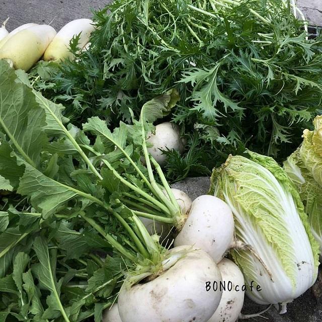 BONOカフェお野菜