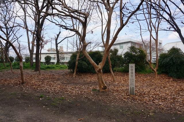 茨木市制施行35周年植樹DSC04978