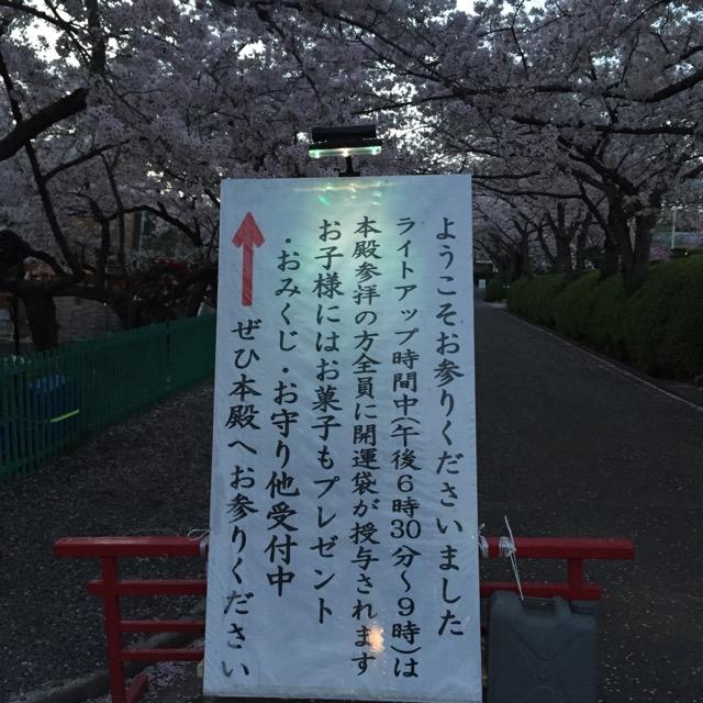 弁天さんの夜桜2017IMG_6215