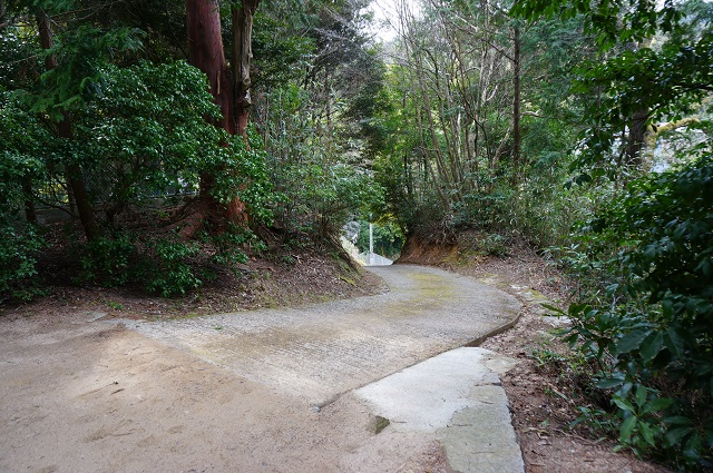 10見山の郷神社の裏の道DSC05181
