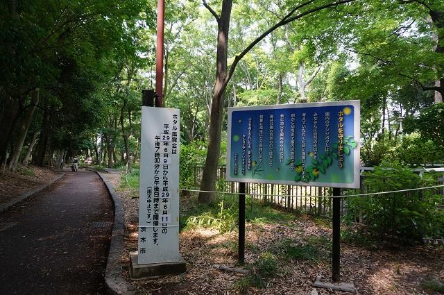 西河原公園ホタル観賞会看板DSC06625