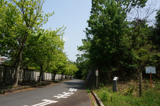720170511安威0号墳の左側の道DSC05994