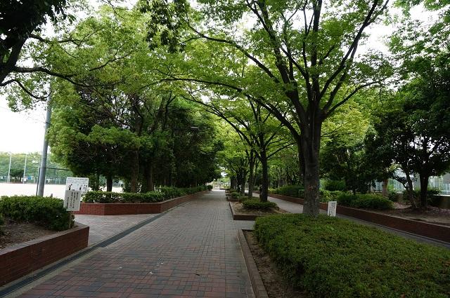若園公園入口DSC07072