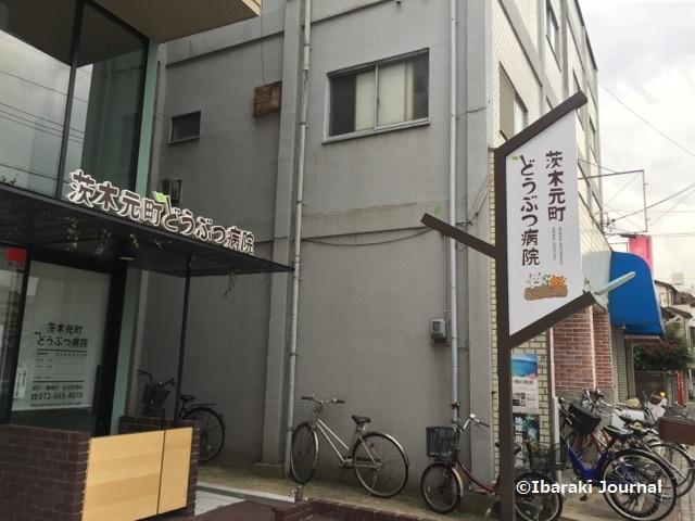 茨木元町どうぶつ病院東側からIMG_0307