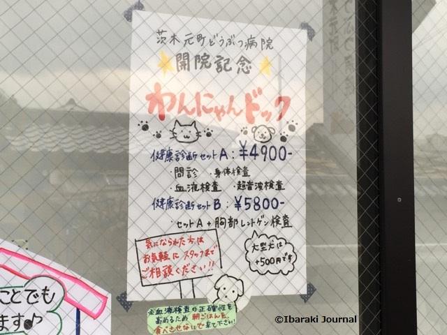 茨木元町どうぶつ病院開院オープン記念IMG_0314