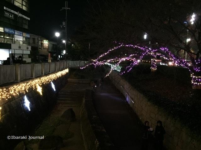 20171127光の回廊桜通り側IMG_0428