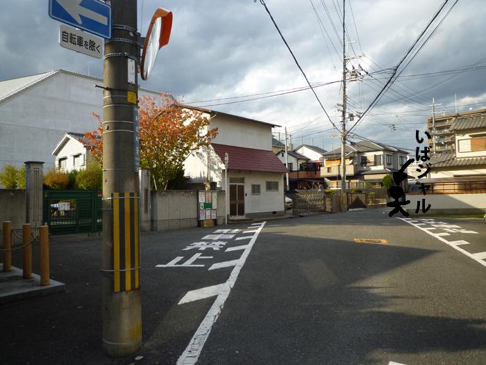 茨木高校東門前の兵桝を南側から