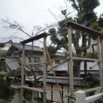 茨木神社正月前むかって右