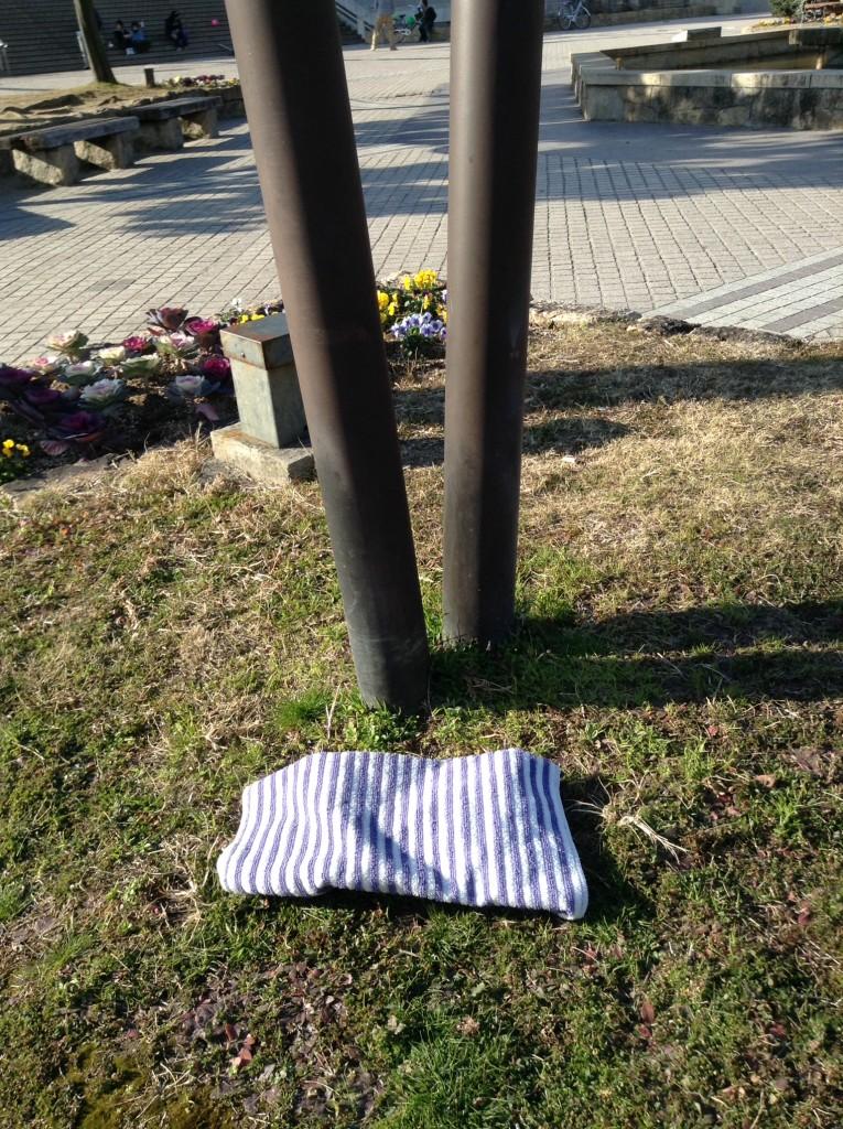 タオルは芝生のところに移動