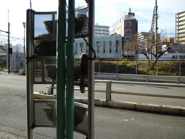 ファーの落し物をJR茨木駅そばで