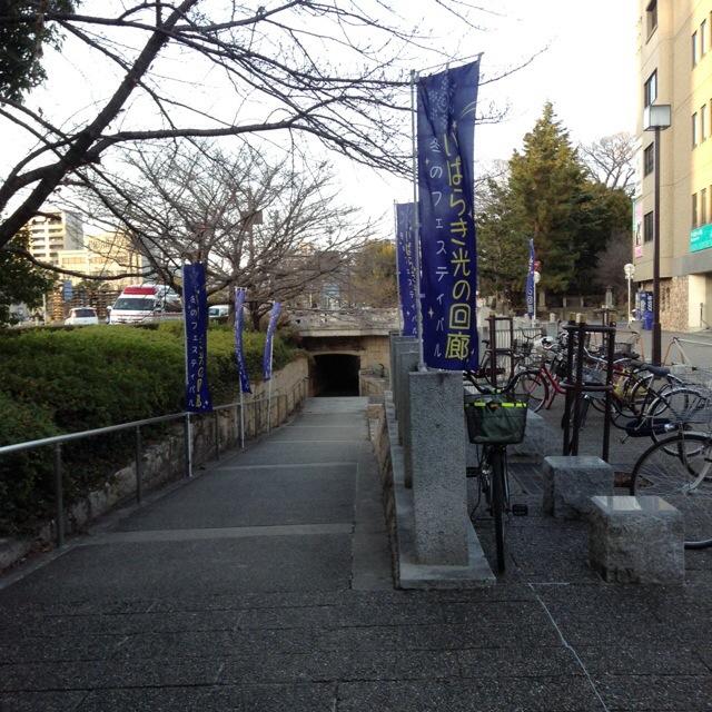 20140201-014507.jpg
