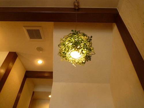 kkカフェりょく照明