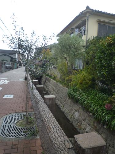 高瀬川の分岐した歩道