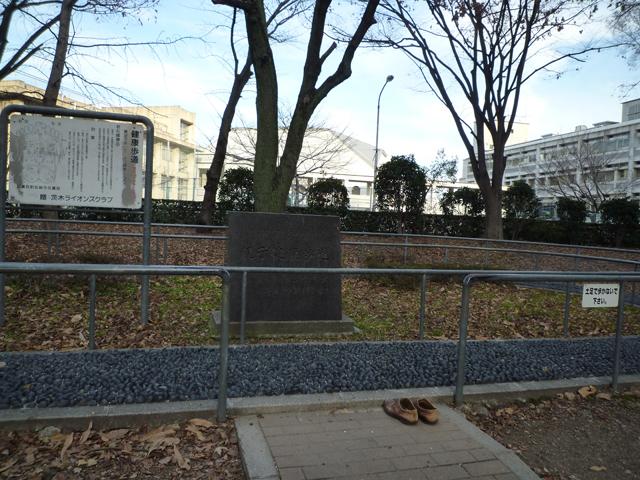 元茨木川緑地の健康歩道正面