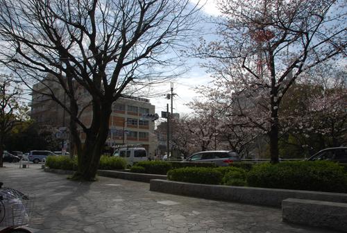 桜通りと東西通りの交差点