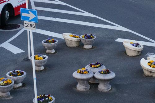 JR茨木ロータリーの花壇アップ