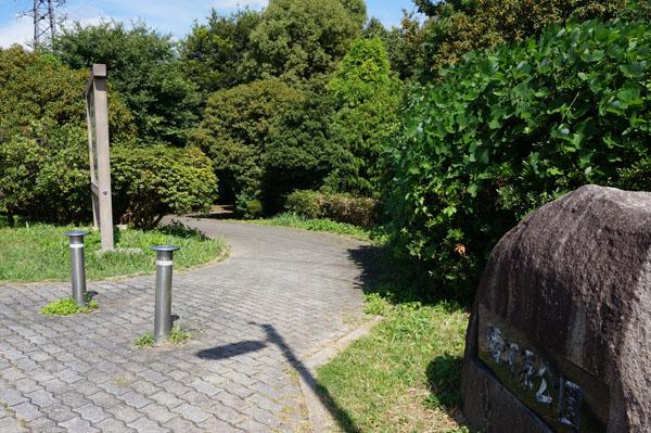 西河原公園への道DSC05601