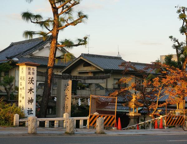 茨木神社全景2014-10