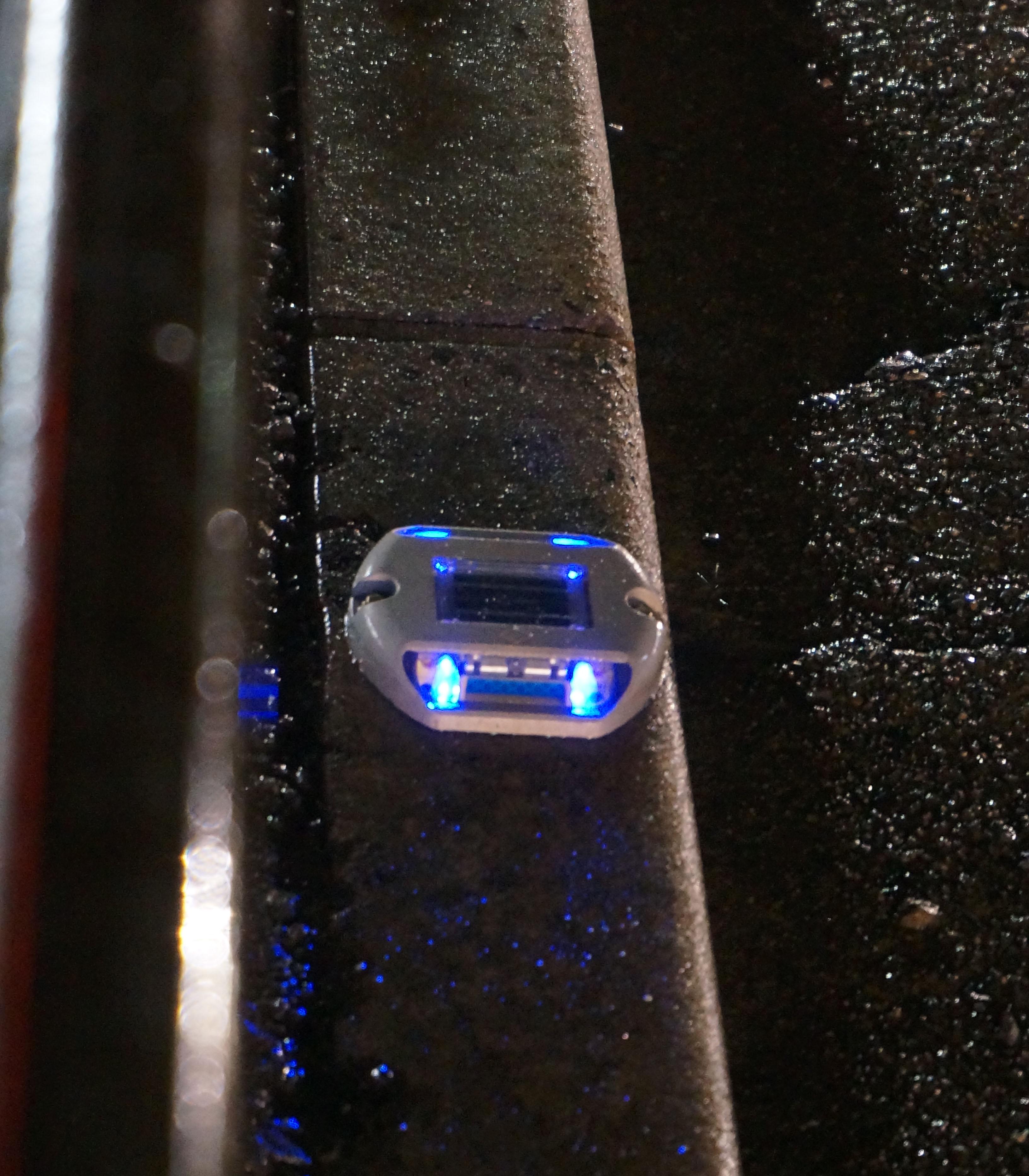 青色発光遠めDSC06129