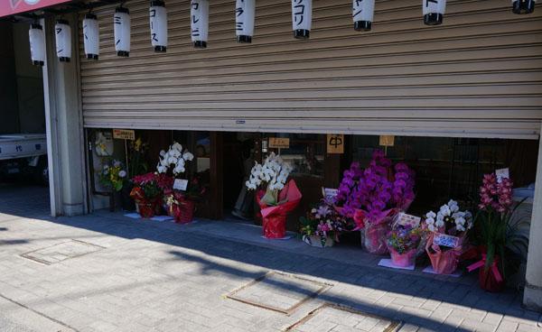 徳臓の店前に花