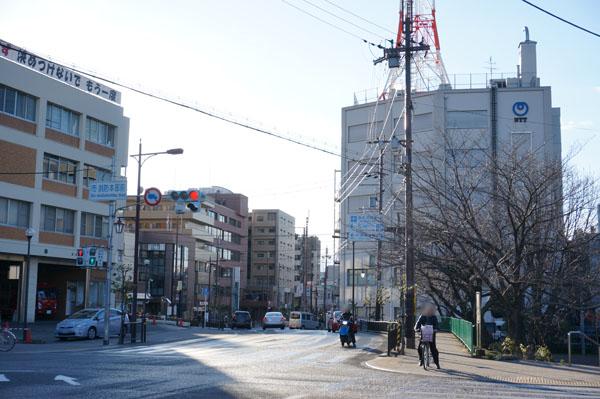 桜通りから市役所への道