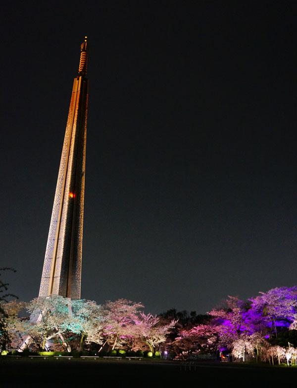 弁天の塔と桜DSC00403