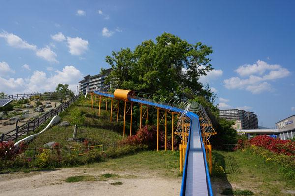 彩都西公園滑り台を見上げる